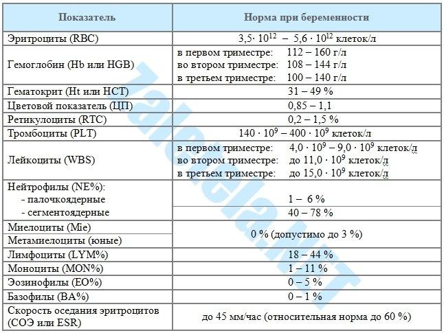 Общий анализ крови норма при беременности