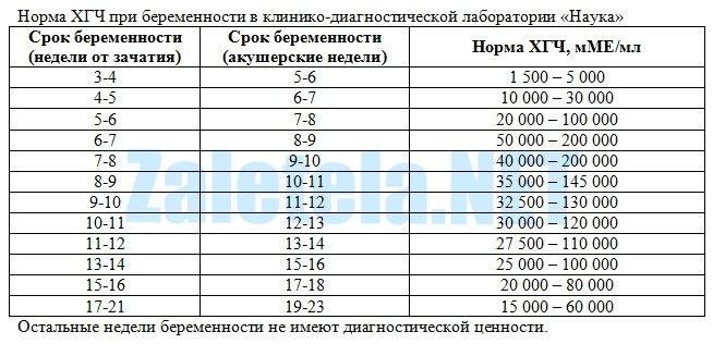"""Нормы ХГЧ в лаборатории """"Наука"""""""