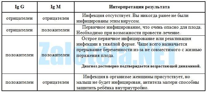 Как расшифровать анализ крови torch-комплекс Справка ПНД для госслужбы Якиманская набережная