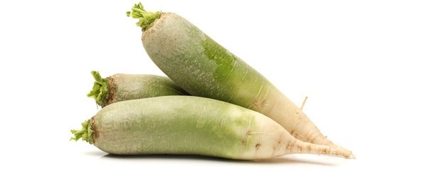 Зеленая редька при беременности