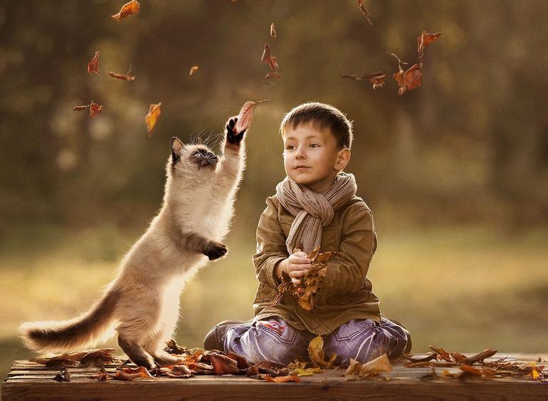 Как домашние животные влияют на детей?