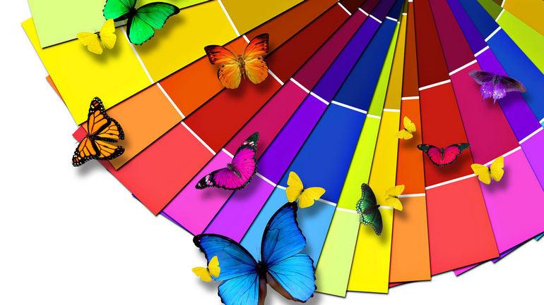 Учим малыша различать цвета