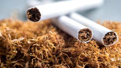 Табачная продукция – виды и особенности